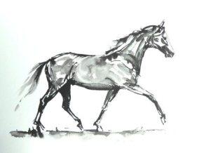 horse-ind-resized-for-websiteian-ink-sketch-sold-july-2017