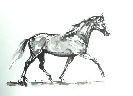 horse-ind-resized-for-websiteian-ink-sketch-sold-july-2017