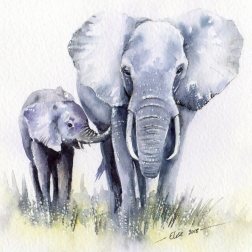 2018 Watercolour elephant Mother's day for website