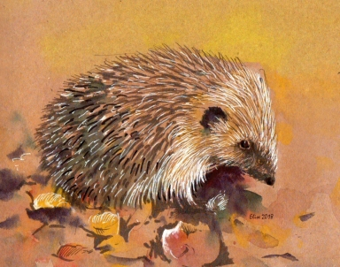 ArtByElise Hedgehog for website
