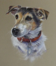 Jack Russle cropped for website