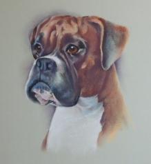 Millie updated progress P1050464 for website