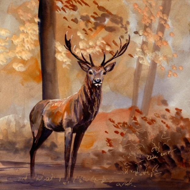 Red Deer 1 cropped for website