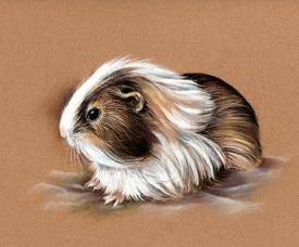 Scanned image of portrait for website